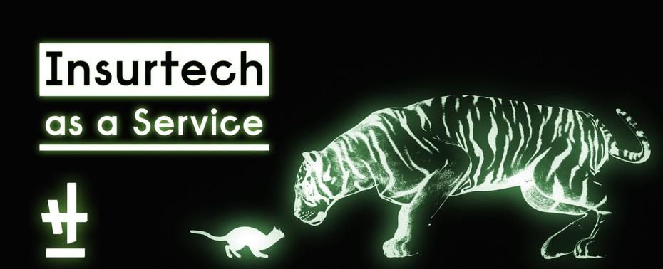 Insurtech企業でバックエンド・インフラエンジニアを募集中です!
